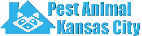 Kansas City Wildlife and Animal Removal